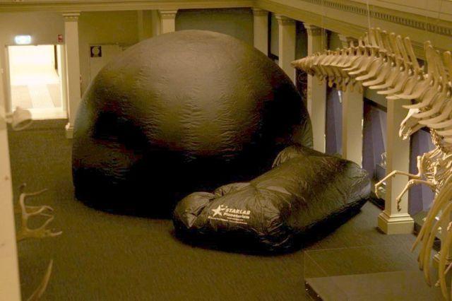 Long Gallery, Australian Museum (Credit: Shane Hengst)